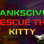 Thanksgiving Rescue The Kitty